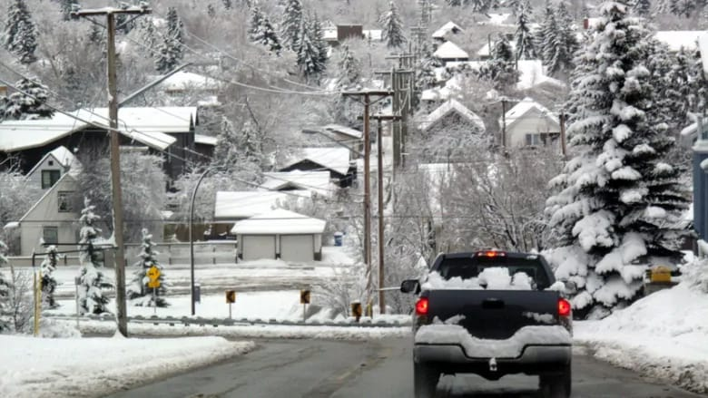 Calgary's power grid has withstood the frigid temperatures of the past month.