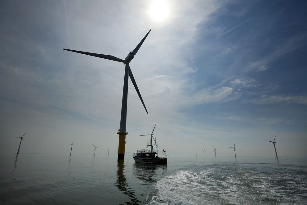 Nearly a quarter of UK?s electricity came from wind turbines in 2020, analysis finds